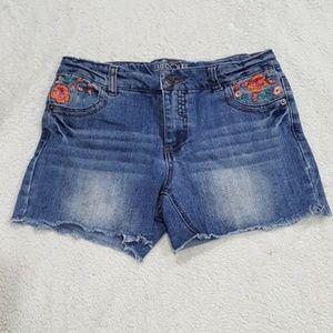 Denim Jean Shorts, XL